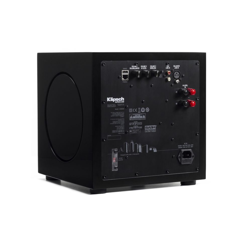 C-308ASWi subwoofer back