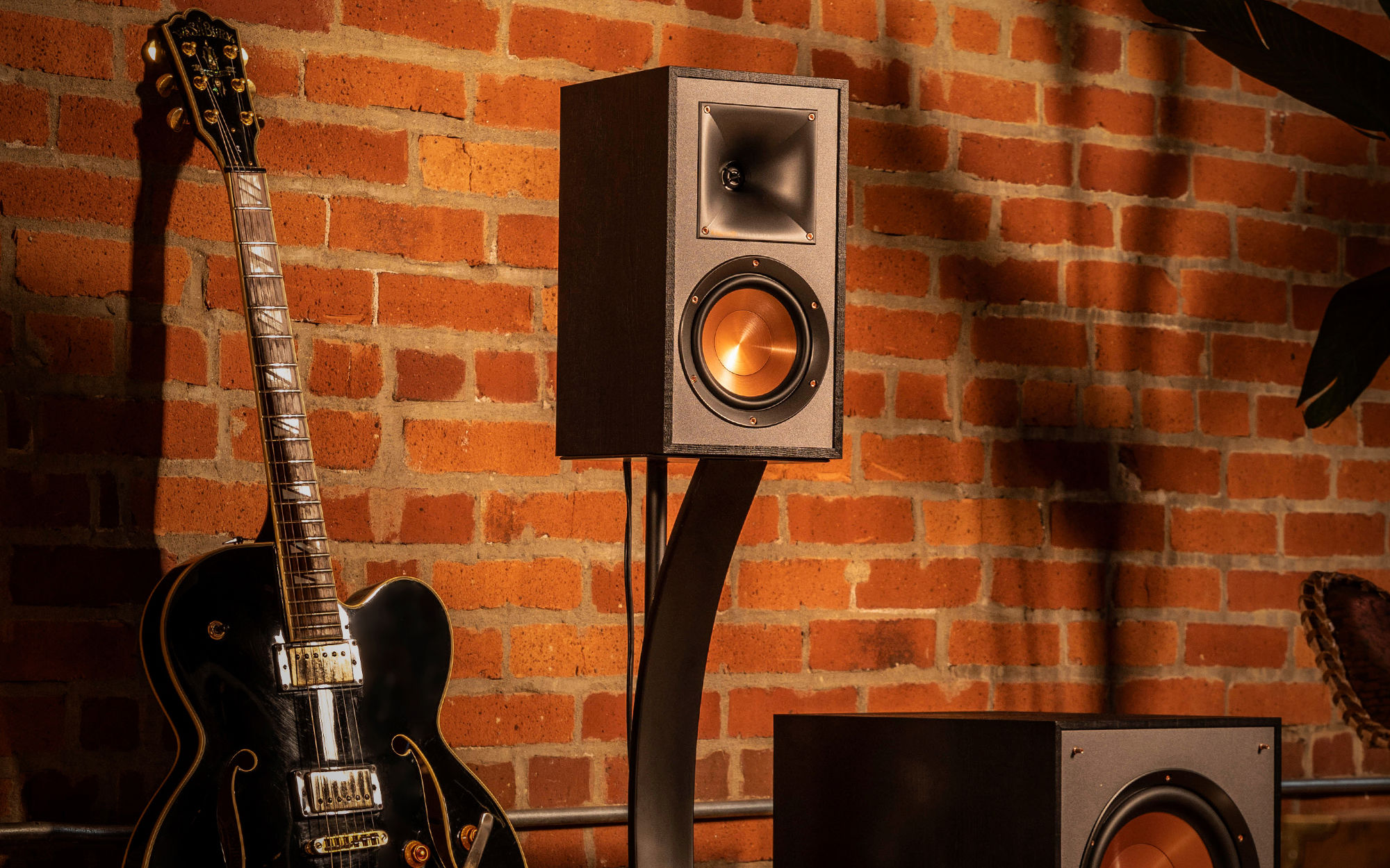 Bookshelf speaker with a guitar and Subwoofer